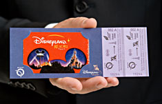 Билет в Диснейленд