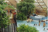 Тропический рай в парижском аквабульваре