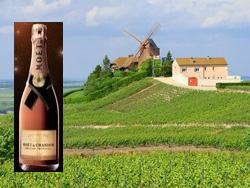 Провинция Шампань и бутылка шампанского