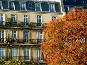 autumnParis2