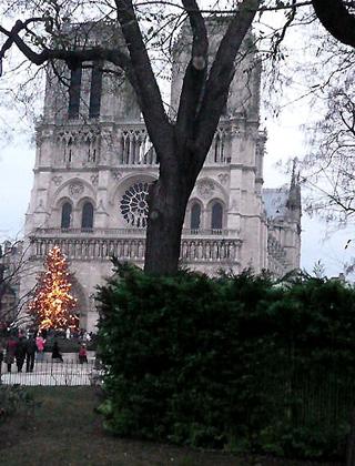 Рождество в Париже. Нотр-Дам