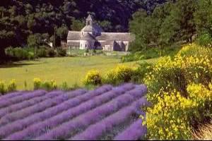 Прованс, Франция