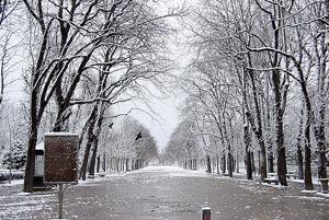 Погода в Париже в январе