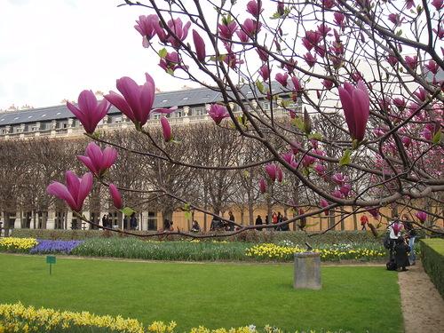 Погода в Париже в апреле2
