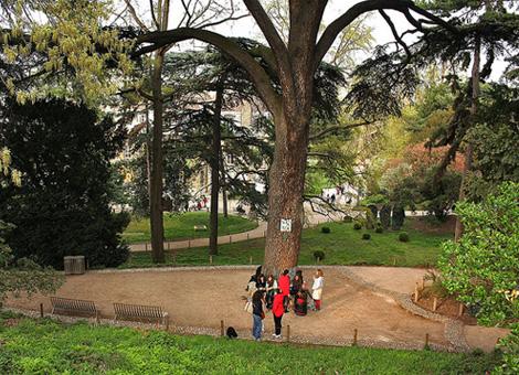 Ботанический сад в Париже2